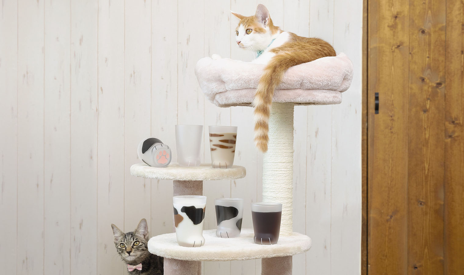 2月22日は猫の日!猫好き必見のグラスウェア